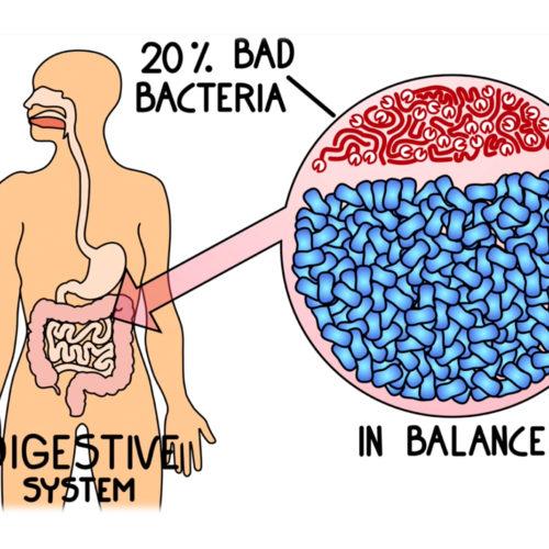 Emergen30 - Probiotics