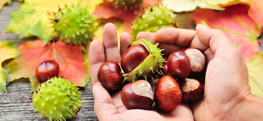 Emergen30 - Natural Horse Chestnut